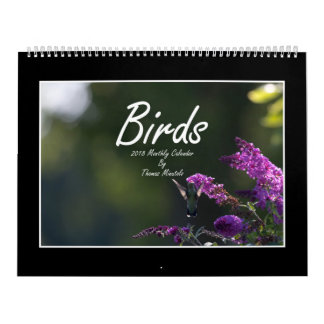 Calendário mensal dos pássaros 2018 por Thomas