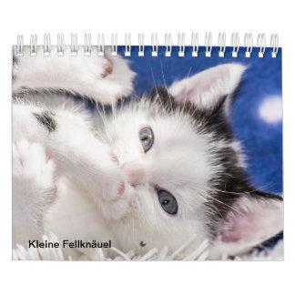 Calendário novelo de pelagem de gato