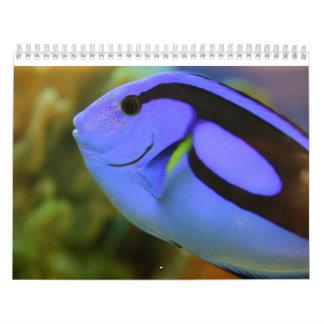 Calendário O aquário