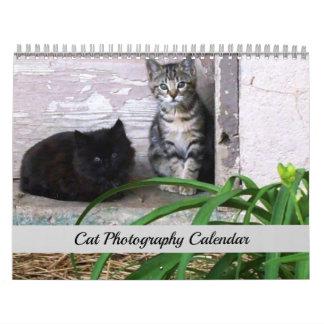 Calendário original da fotografia do gato de