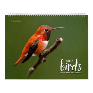Calendário Pássaros selvagens de America do Norte ocidental