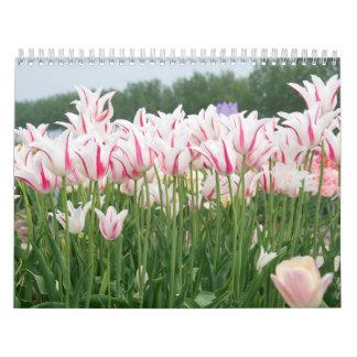 Calendário tulipas todo o ano