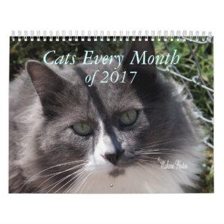 Calendário Um ano dos gatos 2017 - personalize a qualquer ano