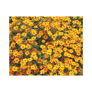 Cama de flor amarela impressão de canvas esticada