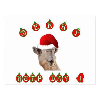 Camelo alegre do dia de corcunda do dia de cartão postal