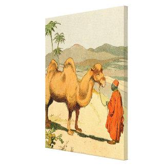 camelo bactriano da Dois-corcunda no deserto