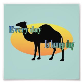 Camelo - cada dia é dia de corcunda impressão de foto