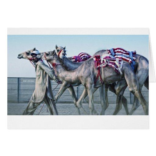 Camelo Cartao