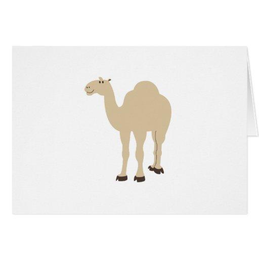 Camelo Cartoes