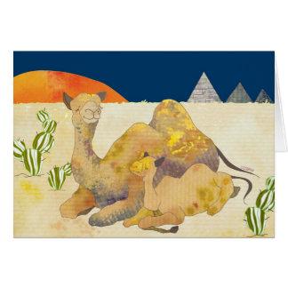 Camelo: Cartão vazio