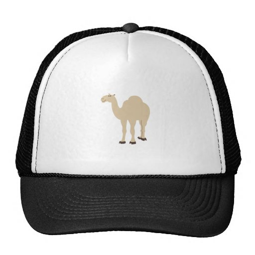 Camelo Bonés