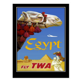 Camelo de Egipto das viagens vintage do cartão