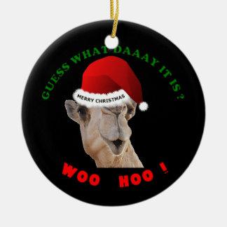Camelo dos enfeites de natal do dia de corcunda