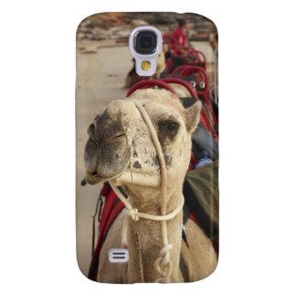 Camelo na praia do cabo, Broome Galaxy S4 Cases