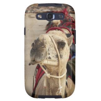 Camelo na praia do cabo, Broome Capa Personalizadas Samsung Galaxy S3