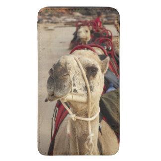 Camelo na praia do cabo, Broome Bolsa De Celular