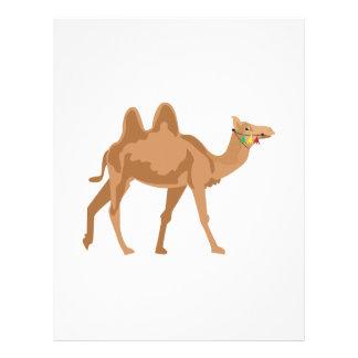 Camelo Papel De Carta
