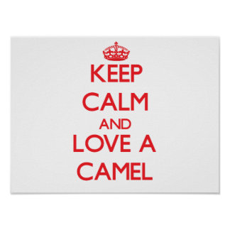 Camelo Posters