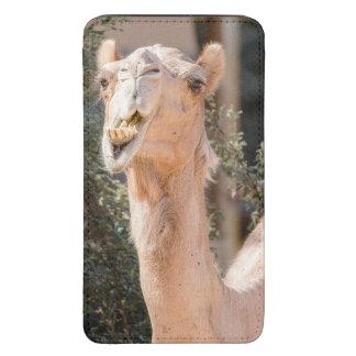 Camelo que olha fixamente ao mastigar bolsa para celular