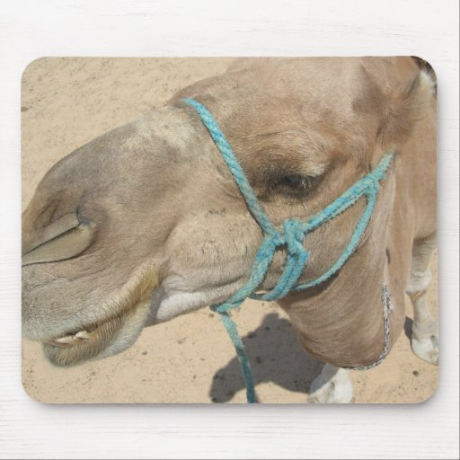 camelo mousepads