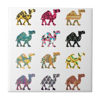 Camelos bonitos do divertimento