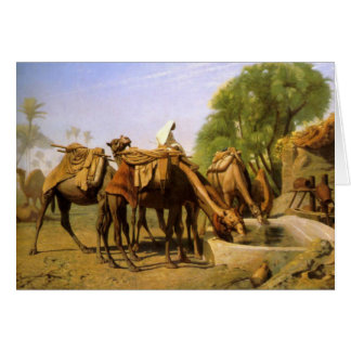 Camelos na calha por Jean Leon Gerome Cartao