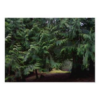 Caminhada da floresta convite personalizados