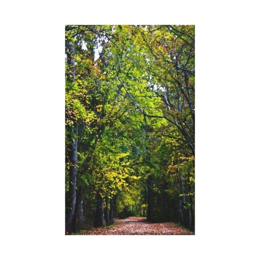 Caminhada do outono abaixo da estrada secundária impressão de canvas esticada