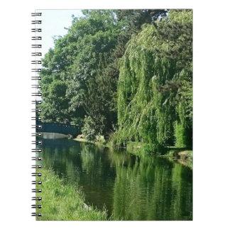 Caminhada ensolarada verde do rio das árvores do cadernos