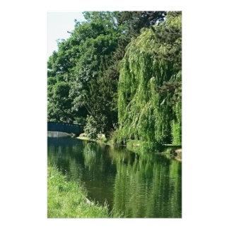 Caminhada ensolarada verde do rio das árvores do papelaria