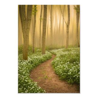Caminhada no convite das madeiras