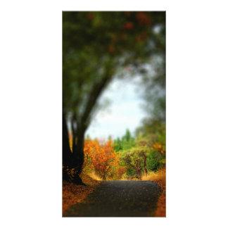 Caminho calmo cartões com fotos personalizados