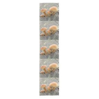 Caminho De Mesa Pequeno Toadstools em um corredor da mesa do tronco de