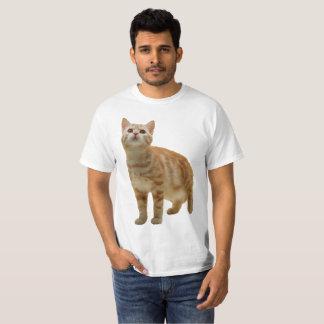 Camisa alaranjada do gatinho do gato malhado