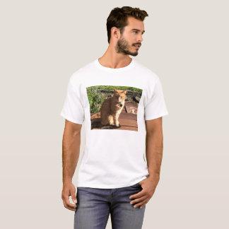 Camisa alaranjada do gato de gato malhado T para
