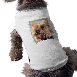 Camisa bonito do animal de estimação do yorkshire  camisa para caes