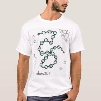 Camisa da cromatina