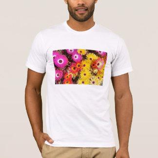 Camisa da flor da margarida