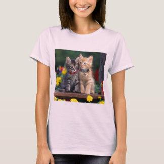 Camisa da flor t do Bonito-Gatinho