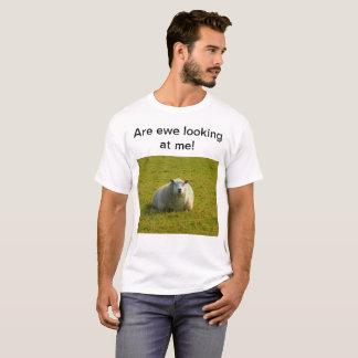 Camisa da ovelha T