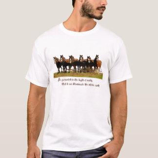 Camisa de Clydesdales