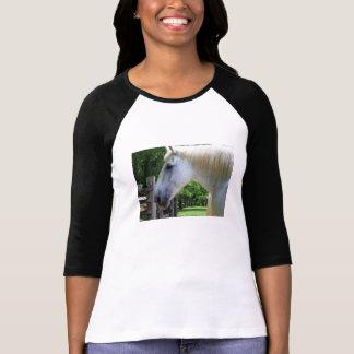 camisa do amante do cavalo