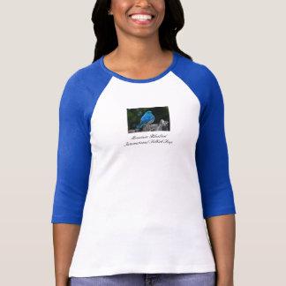 Camisa do Bluebird