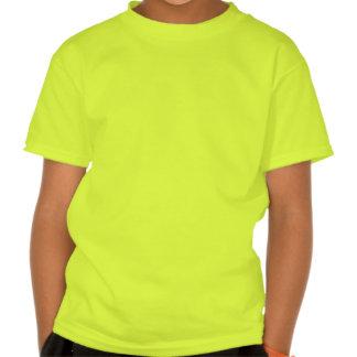 Camisa do cruzeiro do grupo da roda do forro tshirt