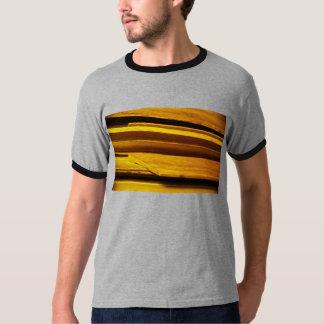 camisa do molde