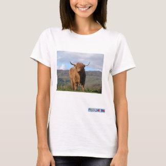 Camisa do PIC T de Bull das montanhas