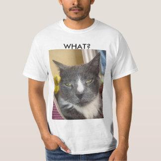 Camisa engraçada do gato