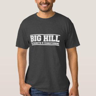 Camisa escolar camiseta