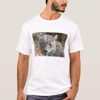 Camisa persa do leopardo