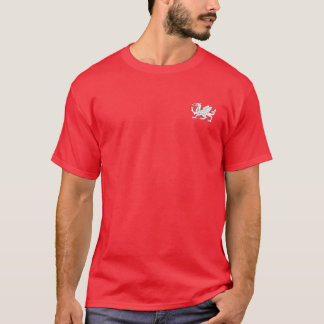 Camisa saxona Anglo